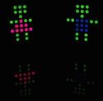 Door LEDs